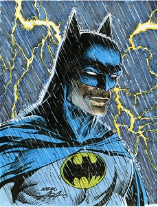 SOLD Batman - The Storm