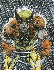 Wolverine Rain- Color Original