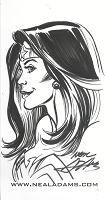 Wonder Woman Quickie 2